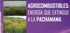 agrocombustibles pachamama