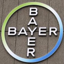 transgenicos patentes bayer