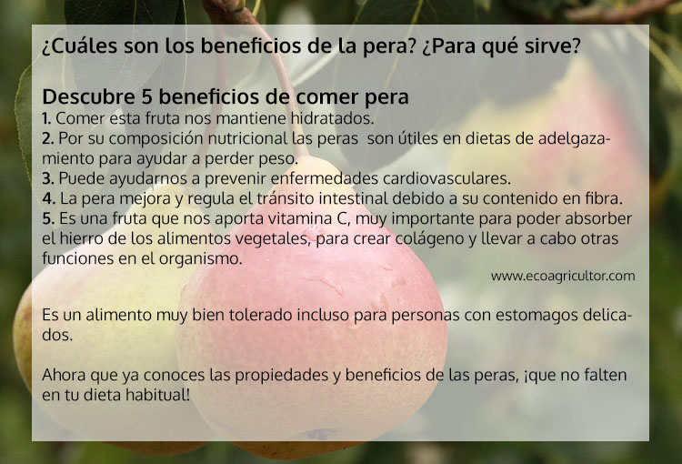 beneficios pera
