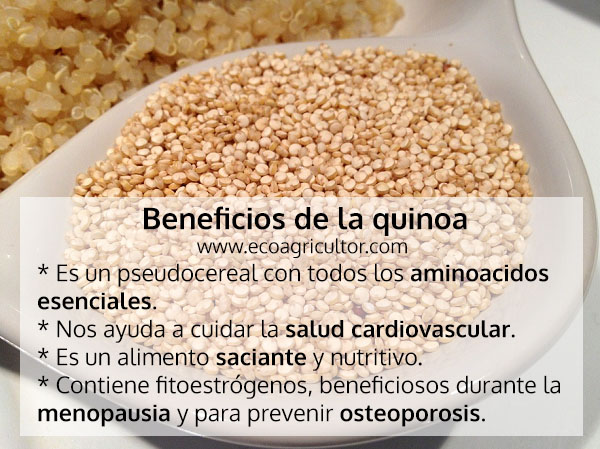 beneficios quinoa