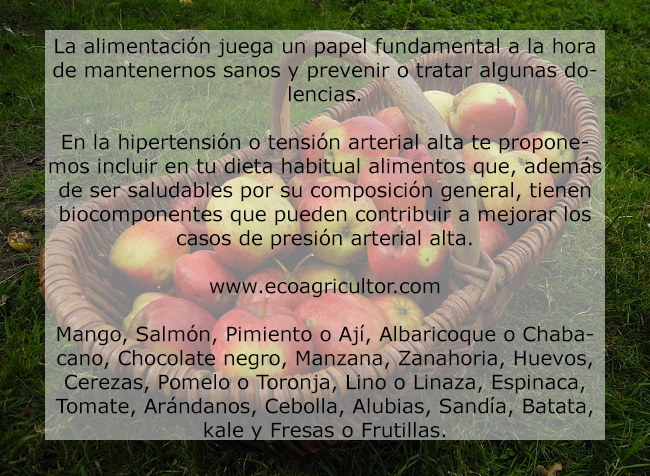 alimentos hipertension