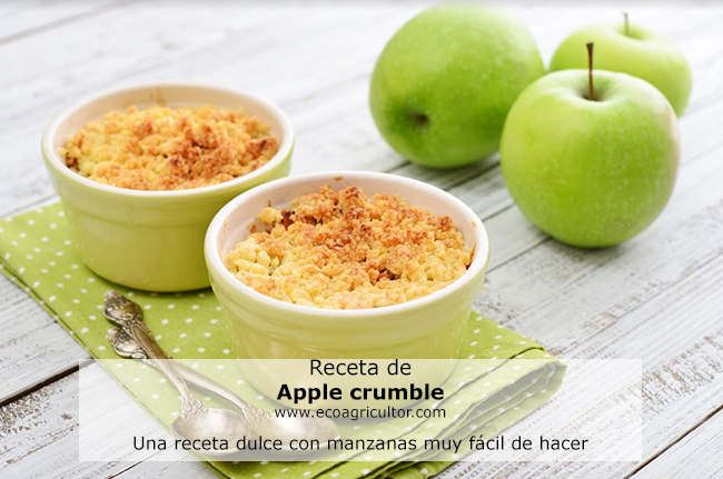 apple crumble receta