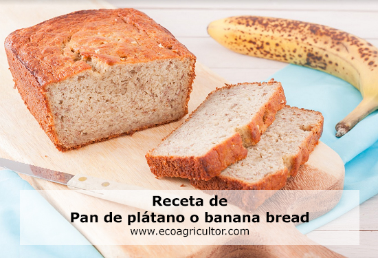 banana bread receta