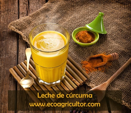 Leche de curcuma golden milk